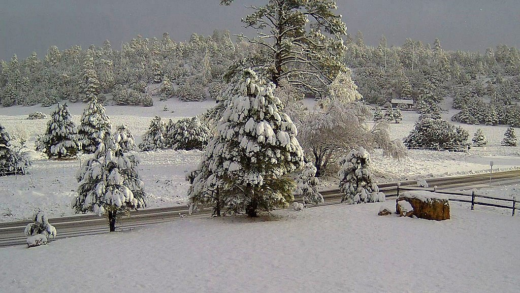 snow in flagstaff arizona